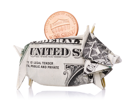 Reliable saving of money and strengthening of the countrys economy. One cent in a piggy bank of an American dollar isolated on a white background