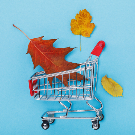 Trolley with leaves on blue background. Concept on the theme of autumn discounts