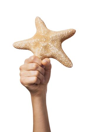 Starfish in hand isolated on a white background. Man holds a star Stock fotó