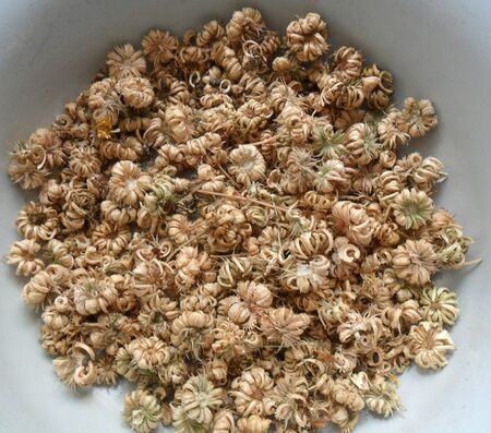 applicable: dried flower seeds,applicable for background design Stock Photo