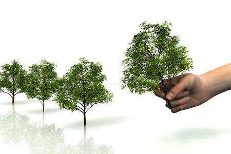 plantando un arbol: escena de la mano con �rbol