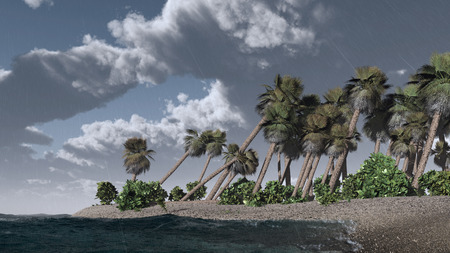 gale: The thunder-storm image on tropical island