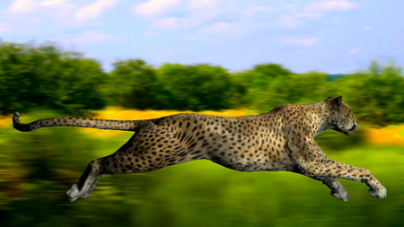 The image of a gepard 3D illustration