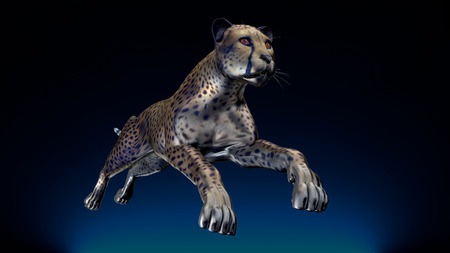 gepard: The image of a gepard 3D illustration