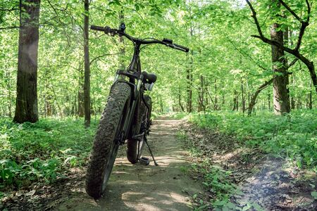 Bicycle with thick wheels on a path in the forest. Sports hobby for health and travel. Electric bike.