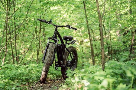 Fatbike on a path in the forest. Sports hobby for health and travel. Electric bike.
