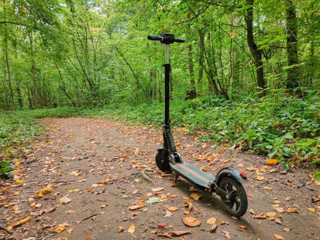 Electric scooter in the forest on the path. Sports hobby. Stockfoto