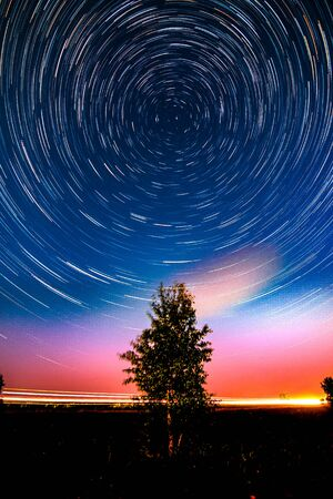 Circle star trails in the night sky above the lonely tree in the meadow