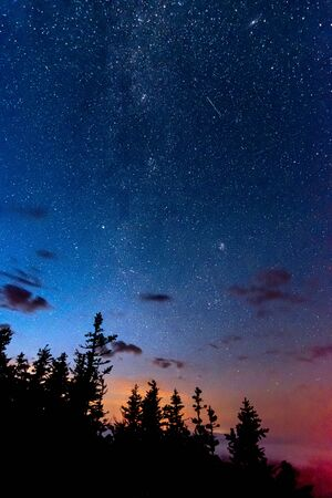 Starry night sky with Milky Way and Perseid meteor and Andromeda above the forest trees 写真素材