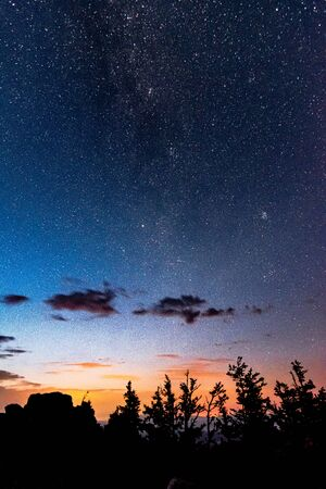View of beautiful starry night sky with Milky Way above the forest trees 写真素材