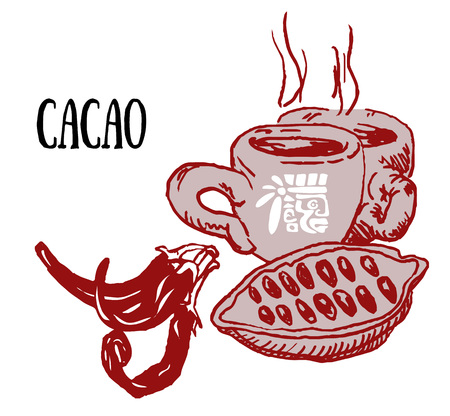cacao: vector illustration sketch drawing cacao bean, cup hot chocolate,red chili pepper and text