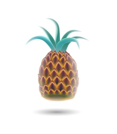 Vector illustration realistic pineapple on white background.