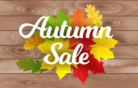 Vector illustration of decorative poster with text and leaves for autumn sale advertisement.