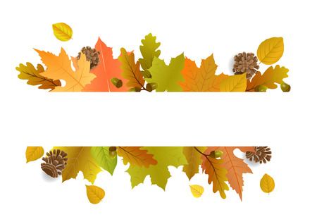Vector illustration poster for autumn sale with decorate text and leaves.