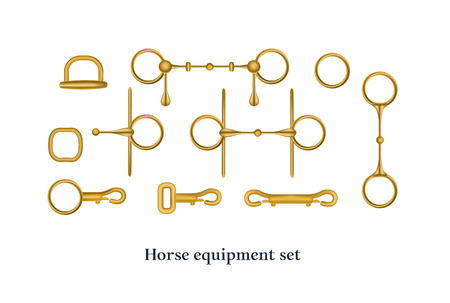 Horse equipment element collection. Vector illustration.