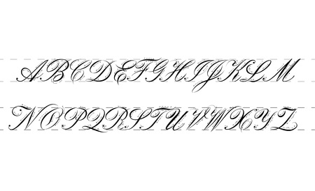 Calligraphy practice guide. Vector illustration.