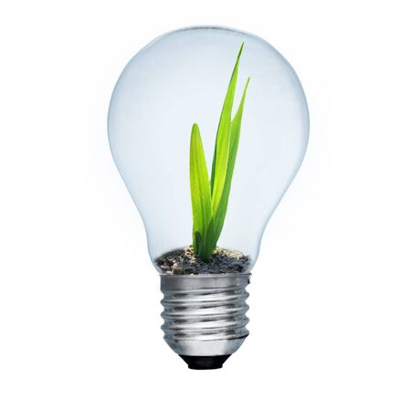 regenerative: Light bulb and green sprout inside. Saving energy concept. Image isolated on white Stock Photo