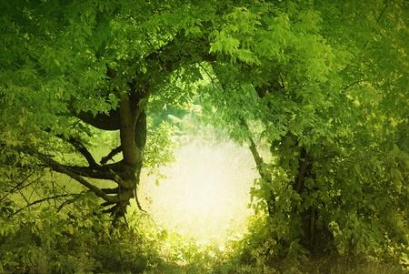 Door to the fairy land. Fantasy landscape