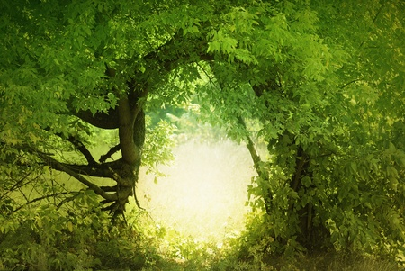 Door to the fairy land. Fantasy landscape photo