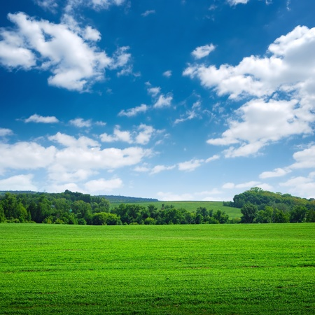 green scope field with trees on horizon and blue sky above Stock Photo