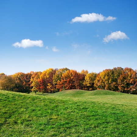 green lawn and colorful autumn trees on blue sky background