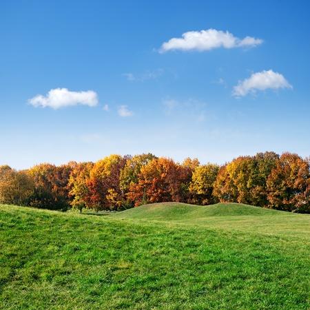 zelený trávník a barevné podzimní stromy na modrém pozadí oblohy