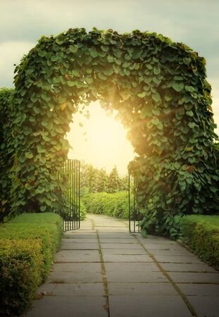 Door to the fairy land and sun beams. Fantasy image photo
