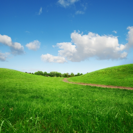 grassy green hills and lane to remote trees on blue sky background
