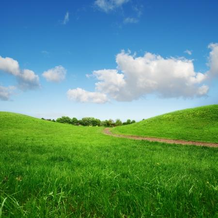travnaté zelené kopce a cesta do vzdálených stromů na modré obloze na pozadí