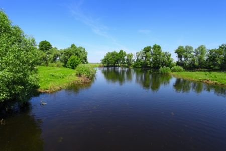 landscape with calm river water and green trees in sunny day