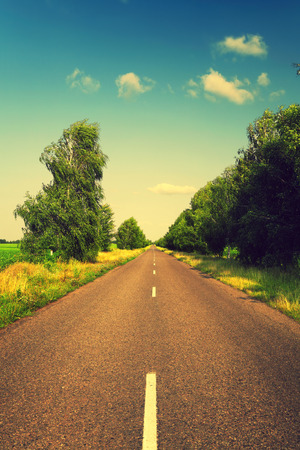 long asphalt road and green trees with retro colors