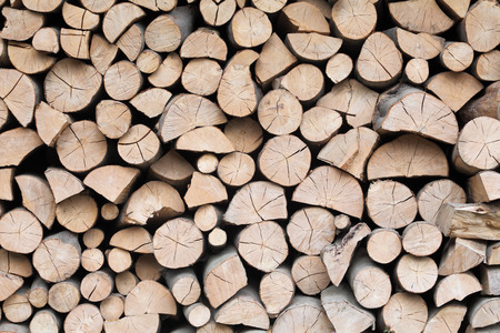 firewood: Firewood dry logs in a pile. Natural wooden background