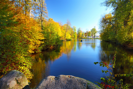sunny day: Colorful autumn trees near the river in park. Blue sky reflected in calm water. Landscape in sunny day