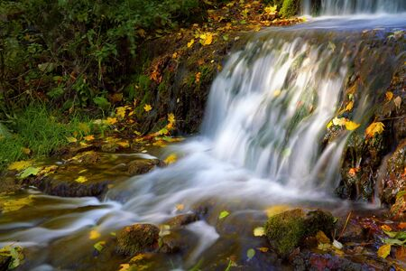 water flowing: small waterfall with autumn leaves in flowing water