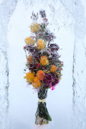 yellow block: Frozen beautiful flowers with yellow roses in block of ice Stock Photo