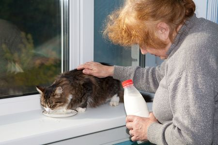 The old woman allows to have  drink  cat milk from a saucer Stock Photo