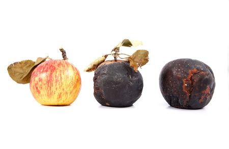 Ripe and rotten apples with dry leaves on a white background