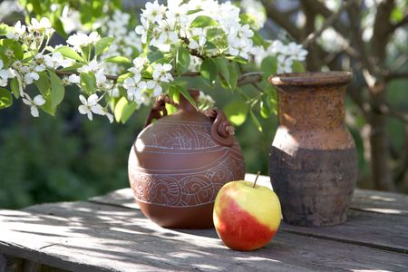 Jugs and apple on  background of a blossoming tree Stock Photo - 6424154