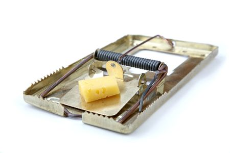 eradicate: metallic mousetrap with cheese on a white background