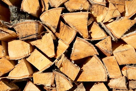 Stack of freshly cut fire wood shined with the sun photo