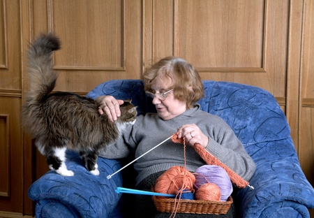 human kind: The old woman sits in an armchair and stroke a cat Stock Photo