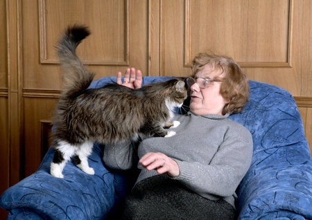 The old woman sits in an armchair and stroke a cat Stock Photo