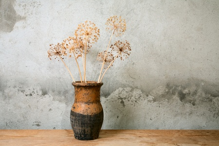 ceramics: Vecchio brocca con fiore secco contro un muro di cemento