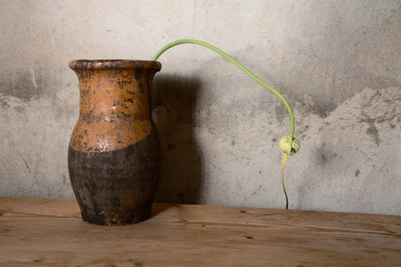 Still-life with an old jug against a cement wall photo