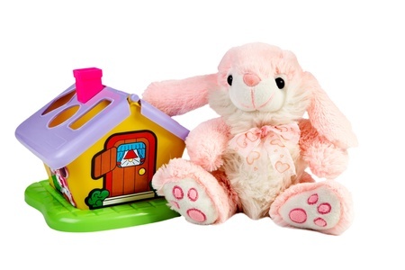 soft toy: Soft toy and small house isolated on a white background