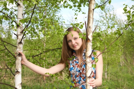 european white birch: The girl among young birches in the afternoon