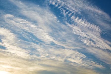 conglomeration: Plumose clouds in beams of the coming sun