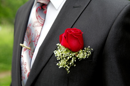buttonhole: Rose in a buttonhole of the groom close up Stock Photo