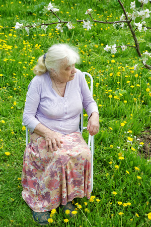 65 70 years: The grandmother in  garden under a blossoming apple-tree