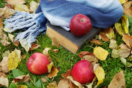 The old book and apples among autumn foliage photo